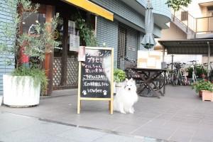 犬の保育園バウビー外観
