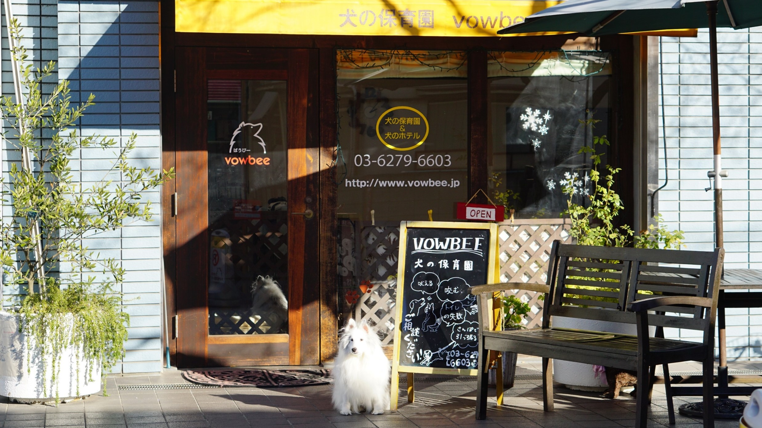 犬の保育園 世田谷